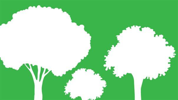 Gl skolevej 32 ikke VVMpligt for skovrejsning